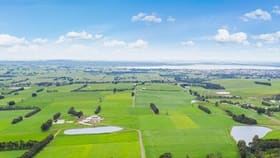 Rural / Farming commercial property for sale at 40 Skinners Road Barongarook West VIC 3249