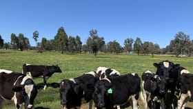 Rural / Farming commercial property for sale at Lot 9003 Padbury Road Dardanup West WA 6236