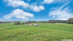 Rural / Farming commercial property for sale at Milabena TAS 7325