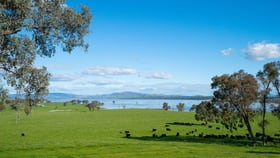 Rural / Farming commercial property for sale at Clancy Road Table Top NSW 2640