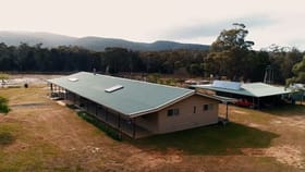 Rural / Farming commercial property for sale at 798 Old Coach Road Cranbrook TAS 7190