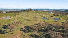 Rural / Farming commercial property for sale at 185 Peregrine Road, Billywillinga via Bathurst NSW 2795