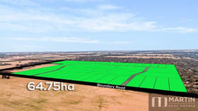 Rural / Farming commercial property for sale at 261 Dawkins Road Lewiston SA 5501