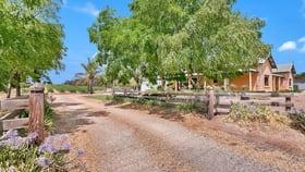 Rural / Farming commercial property for sale at 47 Peramangk Road Nuriootpa SA 5355