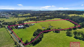 Rural / Farming commercial property for sale at 113 Wilfords Lane Milton NSW 2538