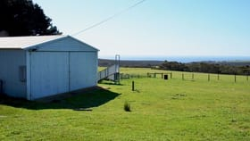 Rural / Farming commercial property for sale at Lot 142 HUMMOCKY ROAD Cassini SA 5223