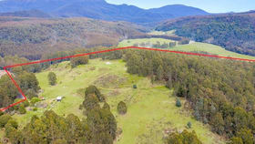 Rural / Farming commercial property for sale at 950 Loongana Road Nietta TAS 7315