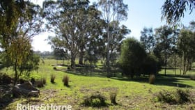Rural / Farming commercial property for sale at 984 FOGARTYS GAP ROAD Walmer VIC 3463