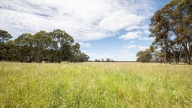 Rural / Farming commercial property for sale at Lot 91 Comaum School Road Comaum SA 5277