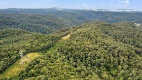 Rural / Farming commercial property for sale at 130 Fernance Lane Cedar Brush Creek NSW 2259