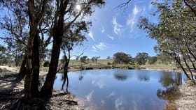 Rural / Farming commercial property for sale at Lot 133, 1488 Mutton Falls Road O'connell NSW 2795