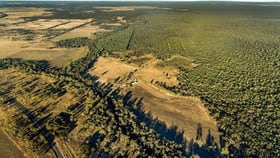 Rural / Farming commercial property for sale at 37 Loupals Road Whetstone QLD 4387