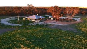 Rural / Farming commercial property for sale at 473 Pinnacle Road Toompup WA 6336