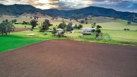 Rural / Farming commercial property for sale at 'Colins' Queens Pinch Road Mudgee NSW 2850