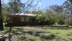 Rural / Farming commercial property for sale at 96 Gilbard Rd Sugarloaf QLD 4380