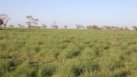 Rural / Farming commercial property for sale at Longreach QLD 4730
