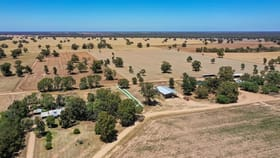 Rural / Farming commercial property for sale at 2370 TOCUMWAL ROAD Tocumwal NSW 2714