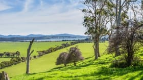 Rural / Farming commercial property for sale at 3 Brodies Road Rowella TAS 7270