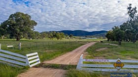 Rural / Farming commercial property for sale at Lindon Road Uralla NSW 2358