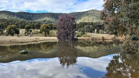 Rural / Farming commercial property for sale at 280 EDGELL LANE Buckaroo NSW 2850