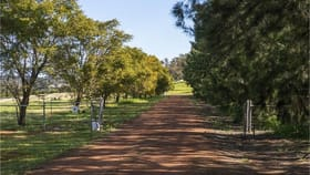 Rural / Farming commercial property for sale at 6053 Great Northern Highway Bindoon WA 6502