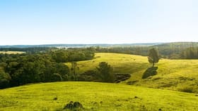 Rural / Farming commercial property for sale at 1800 Canyonleigh  Road Canyonleigh NSW 2577