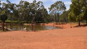 Rural / Farming commercial property for sale at * Glenhaven Park Cobar NSW 2835