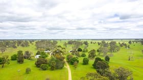 Rural / Farming commercial property for sale at 230 Newlands Settlement Road Apsley VIC 3319