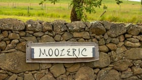 Rural / Farming commercial property for sale at 635 Mooleric Road Birregurra VIC 3242