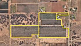 Rural / Farming commercial property for sale at 2, 230 White Cliff Avenue and Lot 2 255 Sheoak Avenue) Mildura VIC 3500