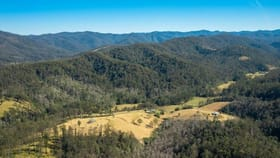 Rural / Farming commercial property for sale at 288 Right Arm Road Upper Pappinbarra NSW 2446