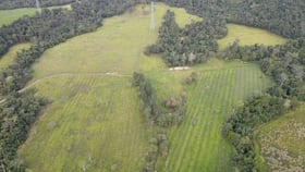 Rural / Farming commercial property for sale at 5 Spiteri Road Bombeeta QLD 4871