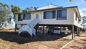 Rural / Farming commercial property for sale at 113 Woodbine Rd Blackall QLD 4472