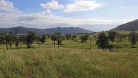 Rural / Farming commercial property for sale at Lot 76 Upper Allan Creek Road Bromelton QLD 4285