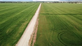 Rural / Farming commercial property for sale at - 'Stanmore' Buralyang road Tallimba NSW 2669