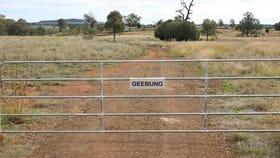 "Rural / Farming commercial property for sale at ""Geebung"" Gwydir Highway Gravesend NSW 2401"