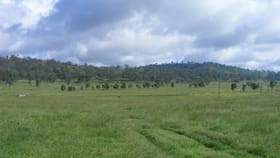 Rural / Farming commercial property for sale at ./Little Ben Emmaville Road Emmaville NSW 2371