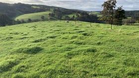 Rural / Farming commercial property for sale at Lot 100 Ferguson Road Ferguson WA 6236