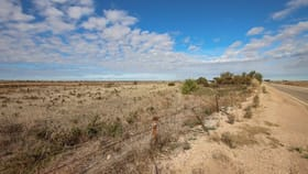 Rural / Farming commercial property for sale at Section 1683 Spencer Highway Wallaroo SA 5556