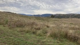 Rural / Farming commercial property for sale at 2021 PEMBROKE ROAD Cassilis NSW 2329