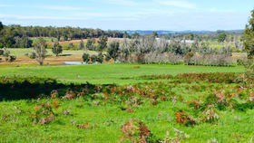 Rural / Farming commercial property for sale at Lot 100 Irishtown Road Donnybrook WA 6239