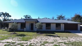 Rural / Farming commercial property for sale at 81 Back Creek Road Severnlea QLD 4380