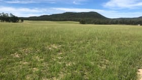 Rural / Farming commercial property for sale at RMB 1613 Appletree Flat Road Ashford NSW 2361