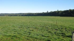 Rural / Farming commercial property for sale at 140 Jaegers Road Roger River TAS 7330