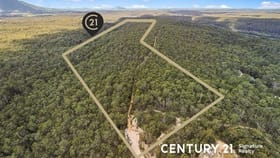 Rural / Farming commercial property for sale at 57B Riversdale Road Tapitallee NSW 2540