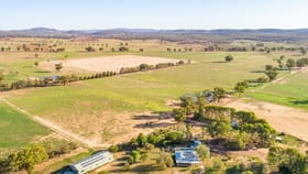Rural / Farming commercial property for sale at 2789 Lachlan Valley Way Gooloogong NSW 2805