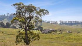 Rural / Farming commercial property for sale at 474 Neringla Road, Neringla Araluen NSW 2622