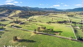 Rural / Farming commercial property for sale at Mansfield VIC 3722