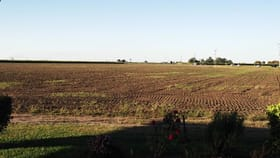 Rural / Farming commercial property for sale at 16 Ayr Dalbeg Road Ayr QLD 4807
