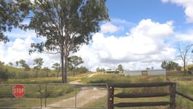 Rural / Farming commercial property for sale at 647 Racecourse Road Calliope QLD 4680
